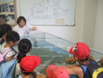 2014.7平和学習 大久野島2.JPG